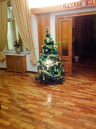 Celebración de la Fiesta de Navidad